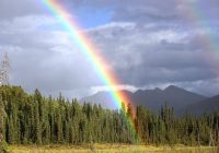 A photograph of a partial rainbow over a forest