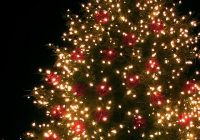 Outdoor Christmas tree with lights